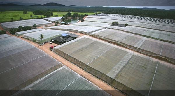 video-production-aerial-johor-malaysia-singapore